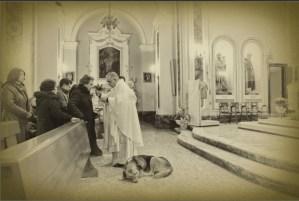 El perro que llora la muerte de su dueña en la iglesia (Foto)