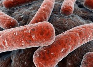 Alerta en California: 350 bebés podrían haber sido infectados por brote de tuberculosis