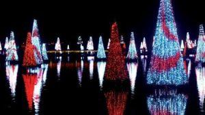 Navidad en Florida