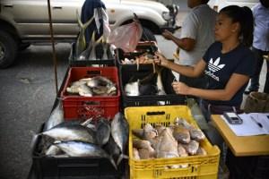 Los pescados populares se consiguen entre 6.000 y 8.000 bolívares el kilo
