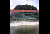Luis Lippa denunció desidia y abandono total de la piscina Trino Omaira en Apure