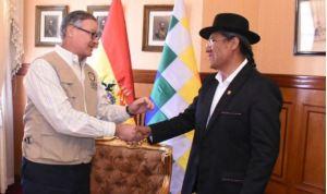 OEA supervisará el escrutinio de los votos tras la primera vuelta ejecutada en Bolivia