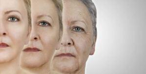 Científicos descubrieron las claves para evitar el envejecimiento