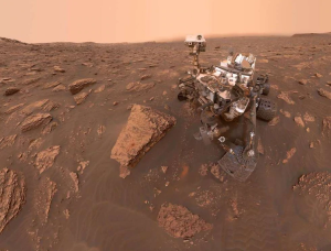 Científico asegura que encontraron insectos en Marte (FOTOS)
