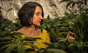 ¿QUÉ? Alimentos con cannabis llegan a las mesas de Italia