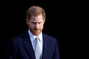El trabajo que los canadienses quieren que el príncipe Harry desempeñe