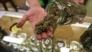 La corte se mete en disputa de licencias de marihuana en Florida