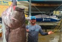 Capturan un mero con 50 años y de casi 160 kilos