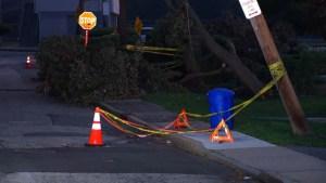 Más de 175,000 siguen sin electricidad en el área metropolitana de Nueva York