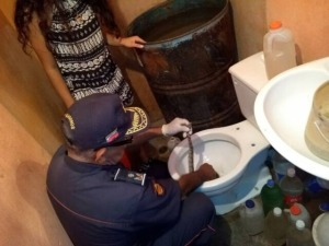 """¡SUSTO! Halló varias culebras """"tragavenado"""" dentro de su inodoro en Maracaibo"""