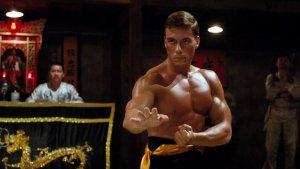 """Encuentran a un ave con """"habilidades similares"""" a las del actor Jean-Claude Van Damme (FOTOS)"""