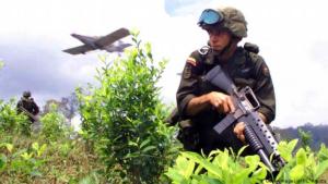 Colombia erradicó 38 mil hectáreas de coca pero aún tiene la mayor cantidad de narcocultivos