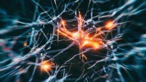 Los cerebros de los muertos por Covid-19 exhiben signos similares a los de pacientes con Alzheimer y Parkinson