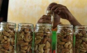 Merey, una semilla que les da el sustento a los zulianos