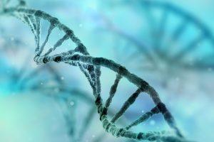 Una proteína que ayuda a reparar el ADN podría potenciar la quimioterapia, según investigación