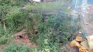 En Aragua, el desborde de aguas negras afectan a casas del barrio El Cementerio en El Consejo