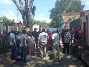 Aragua: 200 familias podrían quedar sin luz ante posible caída de árbol en tendido eléctrico