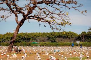 Pese a que pandemia sigue a la baja, Brasil sobrepasó las 594 mil muertes por Covid-19