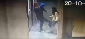 Horror en La Candelaria: Pateó a un perro frente a su dueña y ahora lo busca la policía (VIDEO)